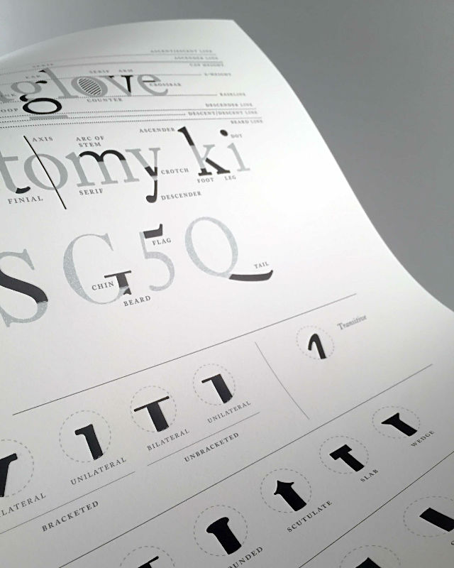 Photo of the Type Anatomy Letterpress Print