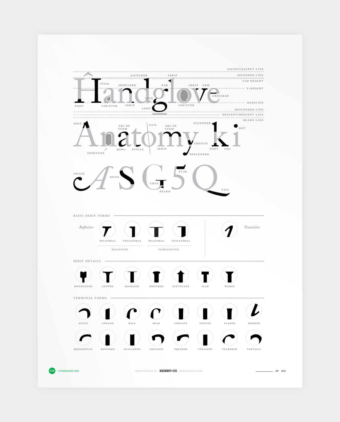 Type Anatomy Letterpress Print