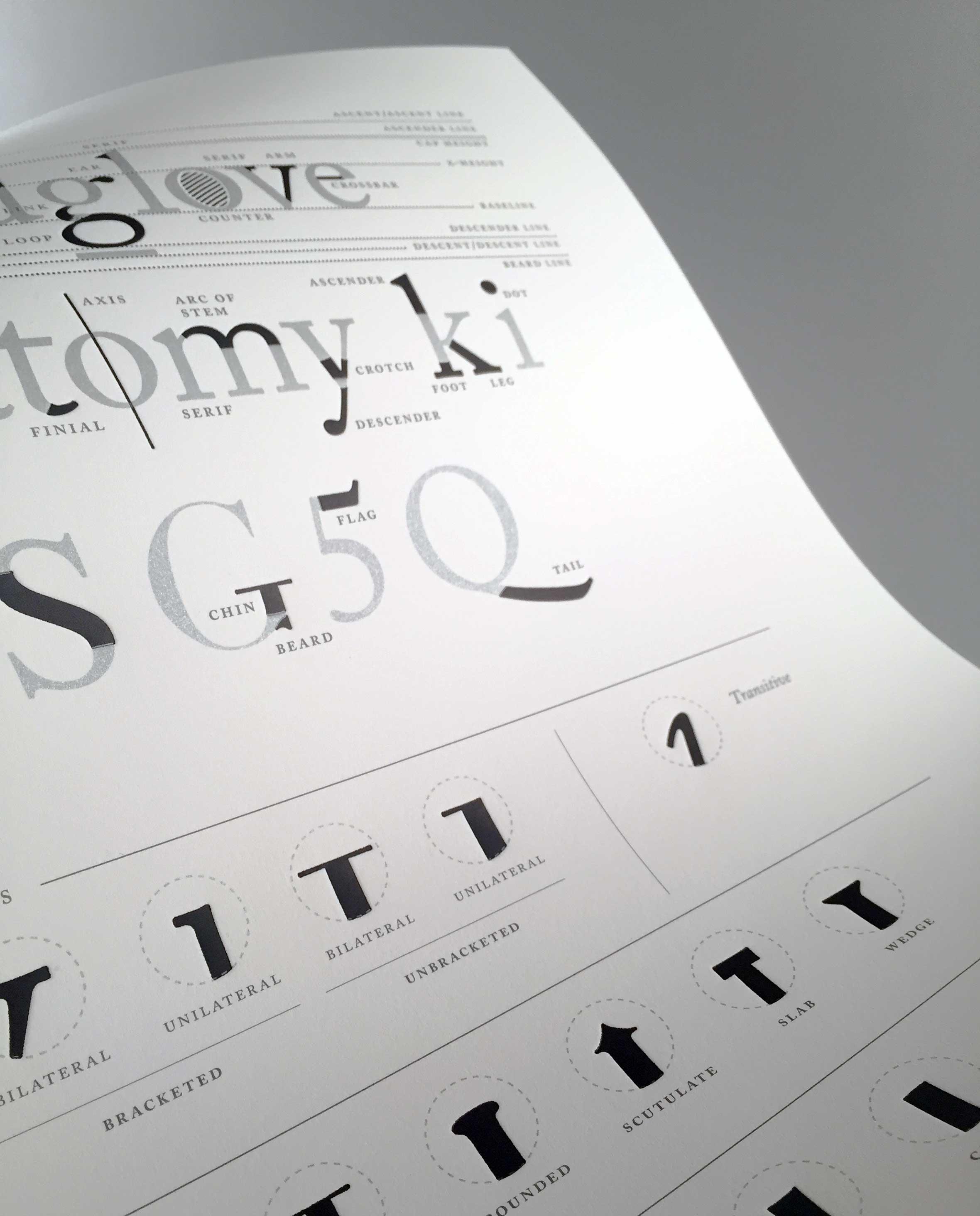 type-anatomy-letterpress-print-1