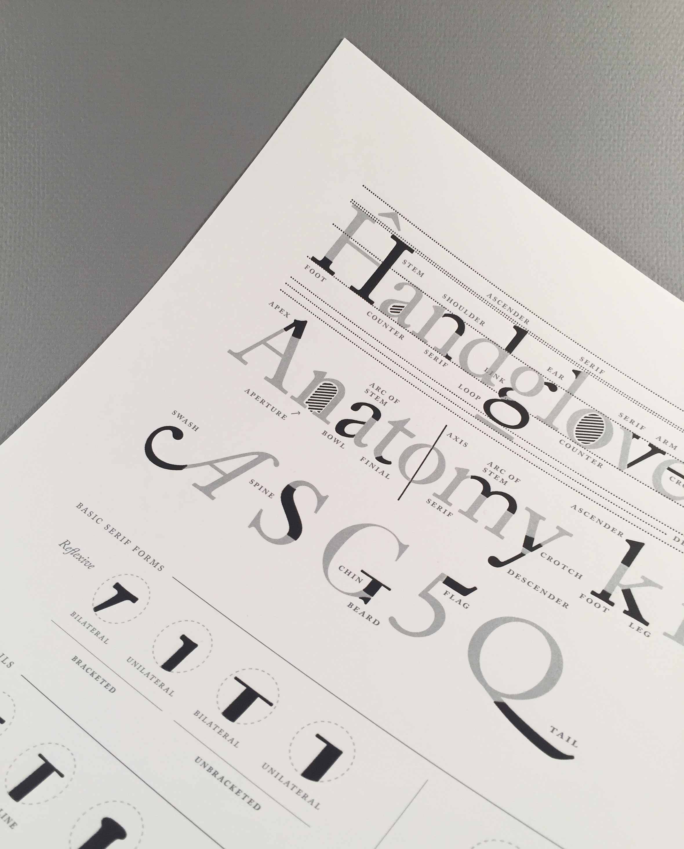 type-anatomy-letterpress-print-3